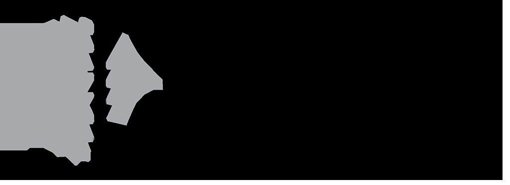 TSM 31